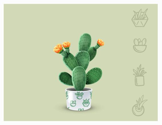 cadou pentru iubitori de plante